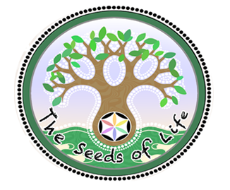 Raw Food Cafe Bali - The Seeds of Life healthy food cafe